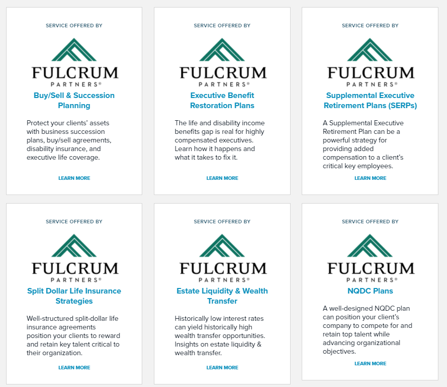Fulcrum Partners Serves CPAs and CPA Firms