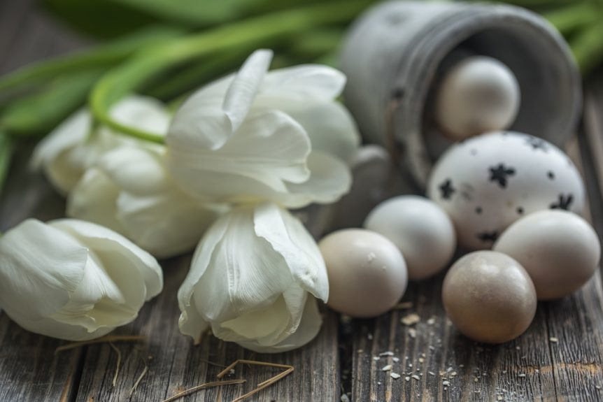 Easter eggs and white tulips